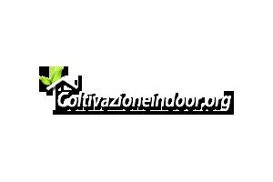 Idroponica fai da te: costruzione sistema idroponico