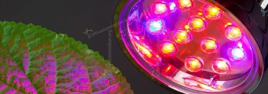 Illuminazione Led per Coltivazione Indoor