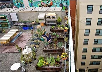 Blog coltivazione indoor kit idroponica in balcone l 39 orto - Coltivazione idroponica in casa ...