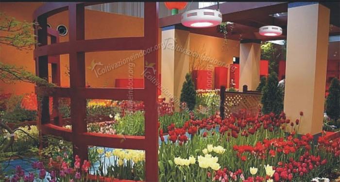 Lampade coltivazione indoor per piante