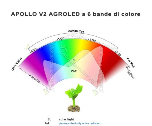 Bande di colore apollo led
