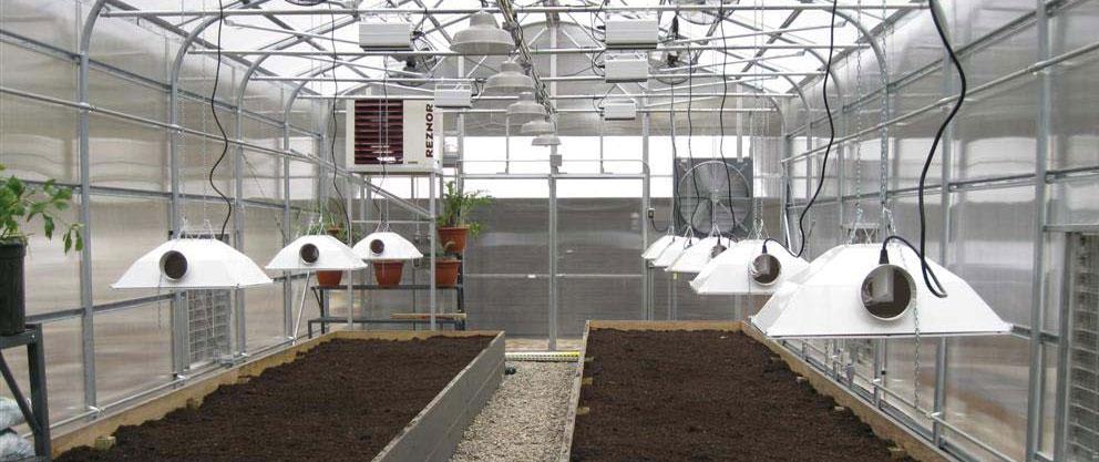 Migliori Lampade Hps Agro per Coltivazione Indoor